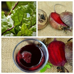 Rote Beete Collage