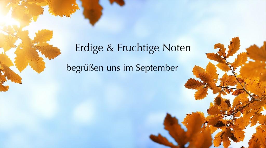 autumn-4034180_1920